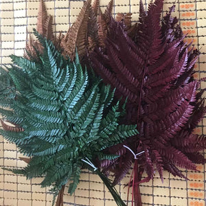 10PCS Dried Natural Fresh Flowers Preserved Leaves,Eternal Dry Fall Leaves,Green,Coffee,Red forever Fern Leaf Home Decoration