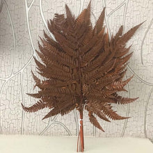 Load image into Gallery viewer, 10PCS Dried Natural Fresh Flowers Preserved Leaves,Eternal Dry Fall Leaves,Green,Coffee,Red forever Fern Leaf Home Decoration