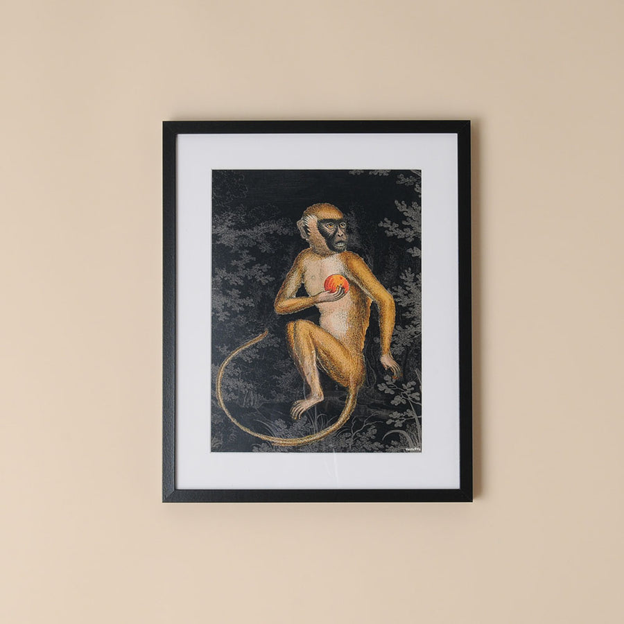 Framed Botanical Print Monkey