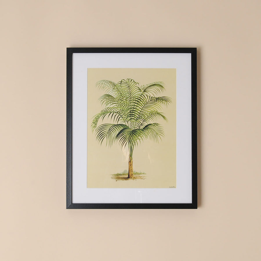 Framed Botanical Print Palm