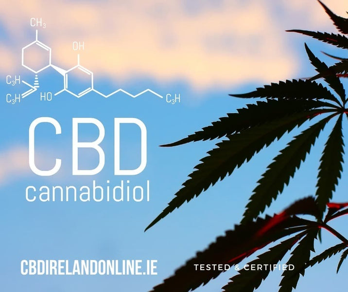 A Complete Guide to CBD Oil in 2020