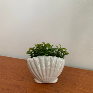 Vintage Iridescent Shell Planter