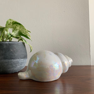 Vintage Iridescent Shell Decor