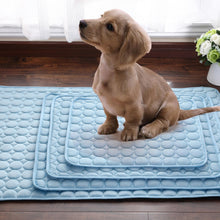 Load image into Gallery viewer, Cooling Blanket Mat For Pets