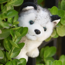 Load image into Gallery viewer, Cute Soft Fluffy Husky Dog Plush Toy