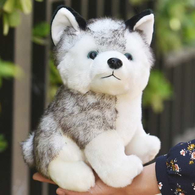 Cute Soft Fluffy Husky Dog Plush Toy