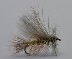 Brown / Olive Stonefly