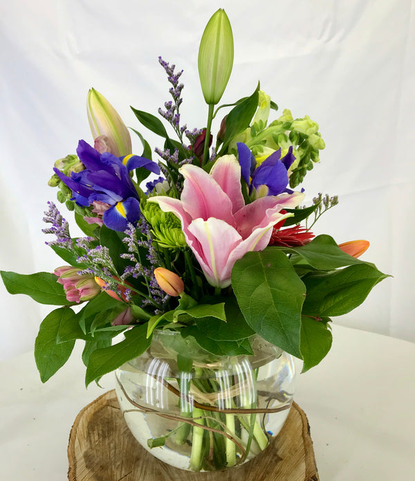 Spring  Bowl - Winnipeg Flower Delivery by Broadway Florists