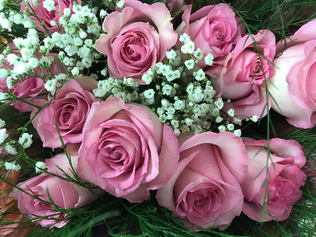 Pink Rose Special - Winnipeg Flower Delivery by Broadway Florists