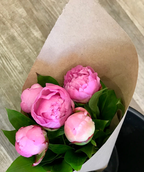 Peony 5 stem bouquet - Winnipeg Flower Delivery by Broadway Florists