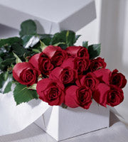 One Dozen  Boxed Roses - Winnipeg Flower Delivery by Broadway Florists