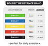 BoldFit Resistance Bands Mini Loop (Set of 5) (Carry Bag Included)