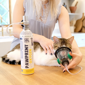 portable oxygen canister pets