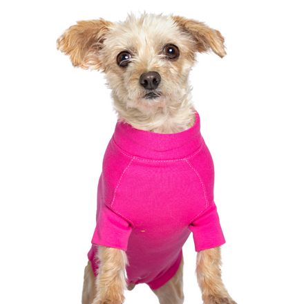 recovery gown yorkie pink