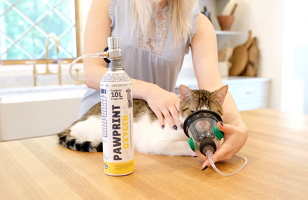 home pet oxygen rescue