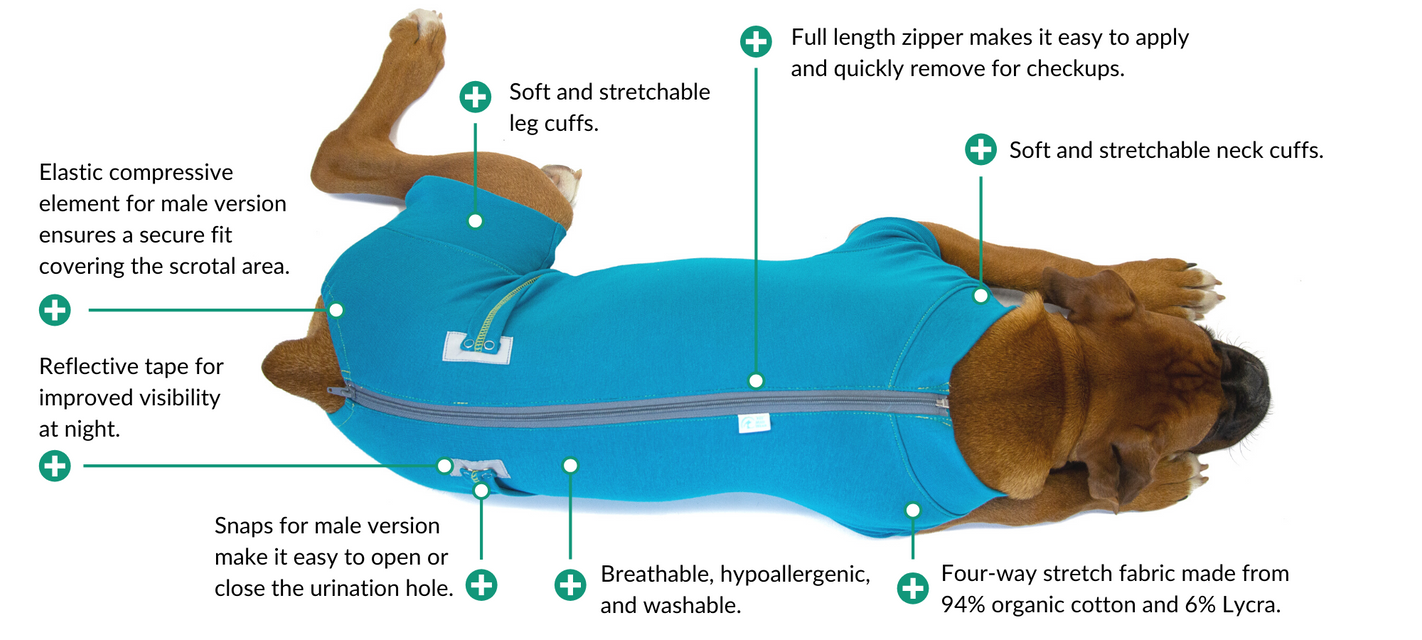 recovery suit blue dog diagram boxer