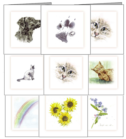 sympathy cards cats dogs rabbits