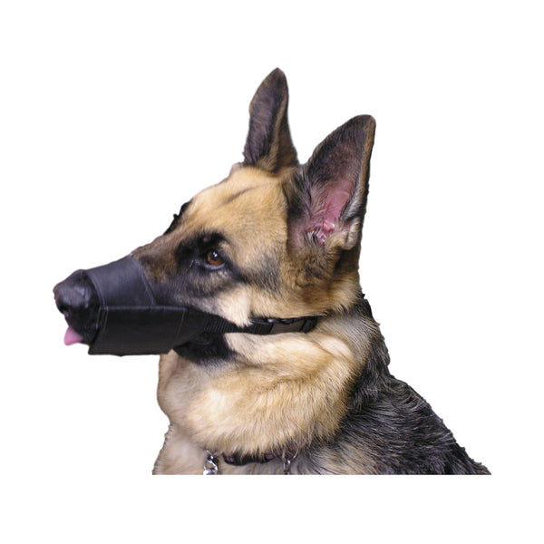 Dental Exam Muzzle for Dogs - VetMedWear