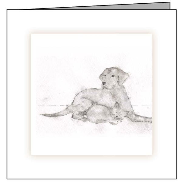 veterinary sympathy card cat dog sketch
