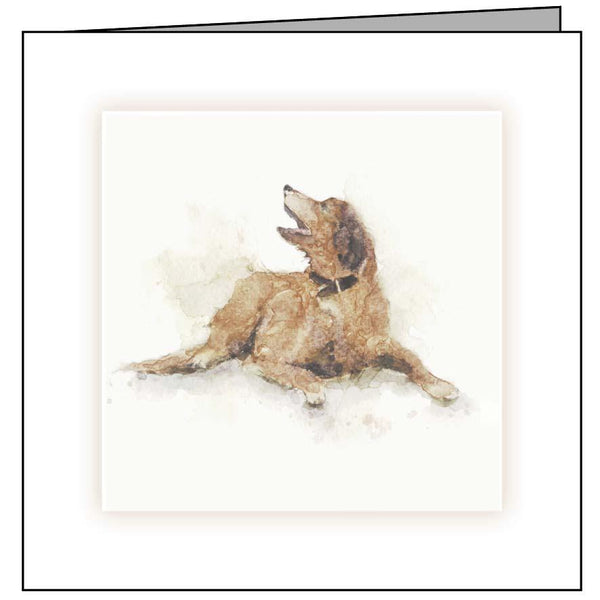 Animal Hospital Sympathy Card - Brown Dog