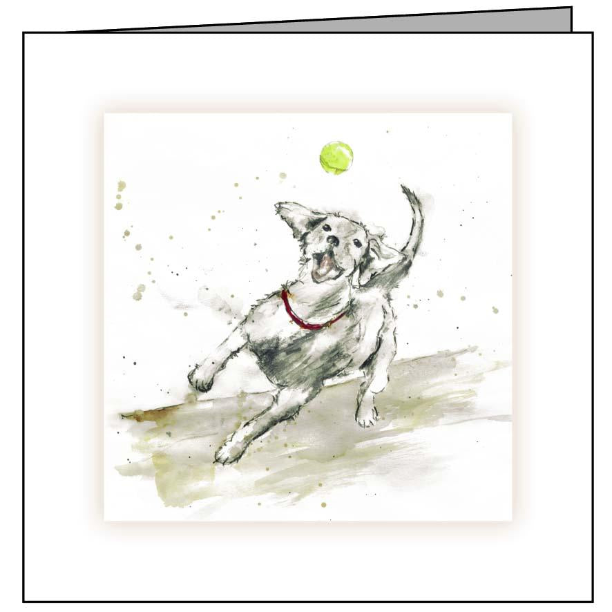 Animal Hospital Sympathy Card - Dog with Ball