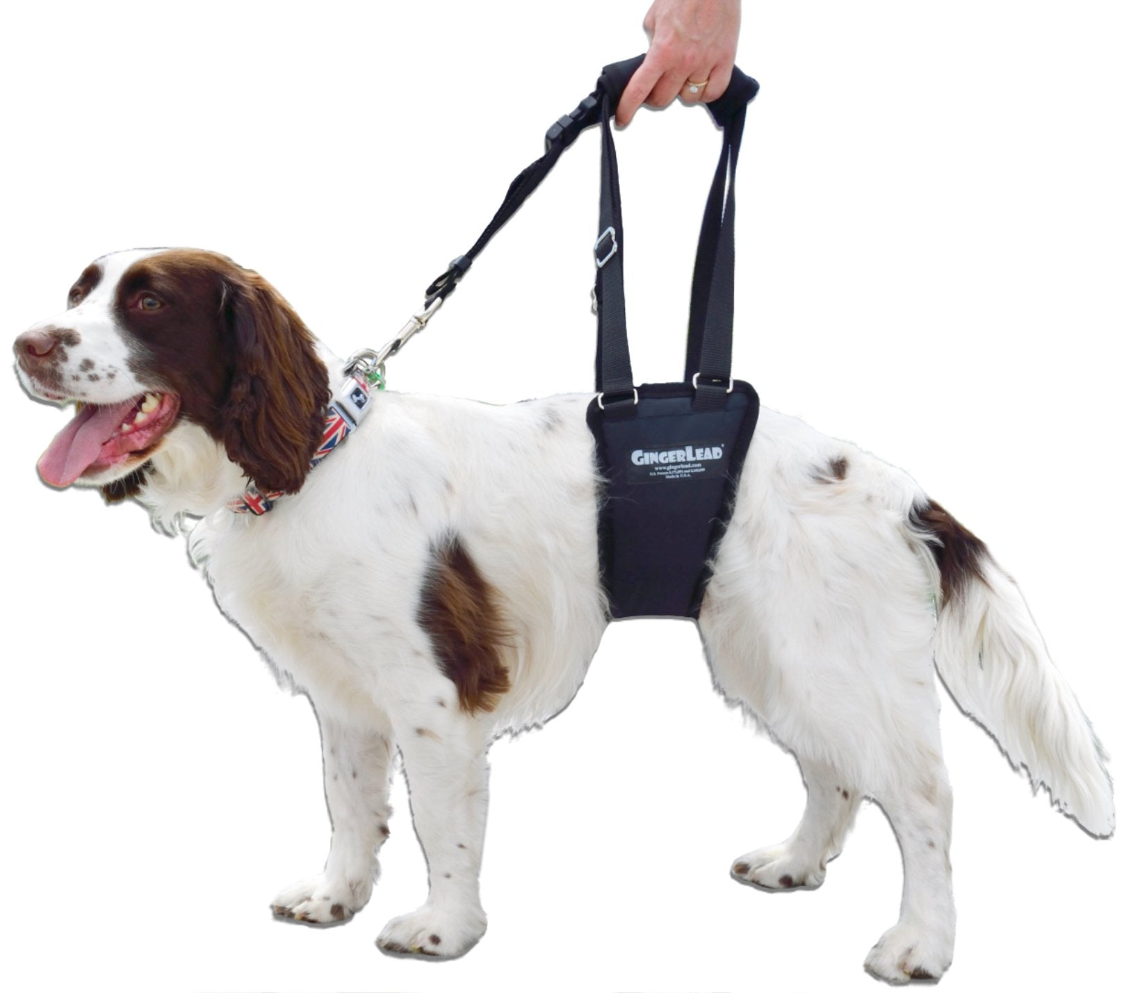 Support Rehabilitation Harness for Dogs - VetMedWear