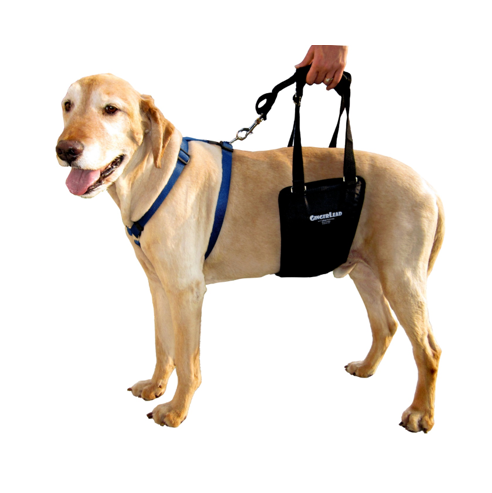 Support Rehabilitation Harness for Dogs