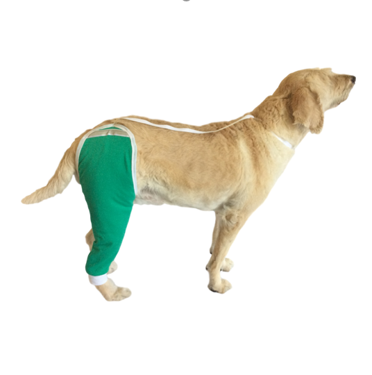 Hip and Thigh Wound Protective Sleeve for Dogs