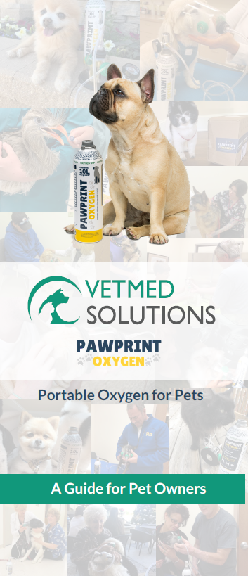 Portable Oxygen Canister for Pets