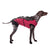 ecollar alternative recovery gown pets dog burgundy