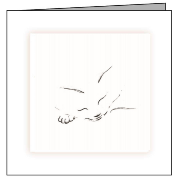 Animal Hospital Sympathy Card - Sleeping Cat