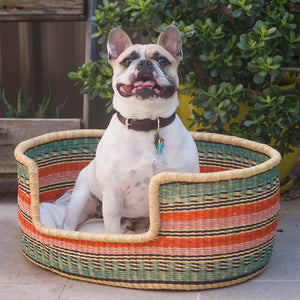 Woven Dog Bed Online - Fair Trade Dog Bed Design My Digs Australia