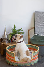 Woven Dog Bed Online Australia - Ethically Made in Africa - Design My Digs