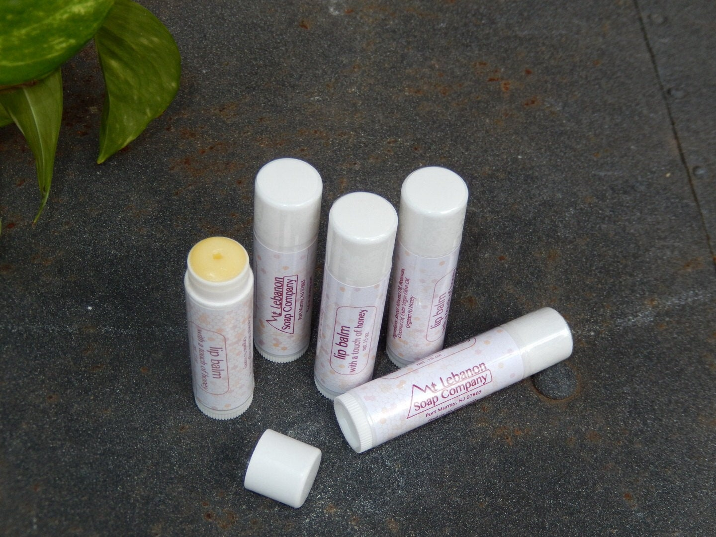 Lip Balm with a touch of Honey