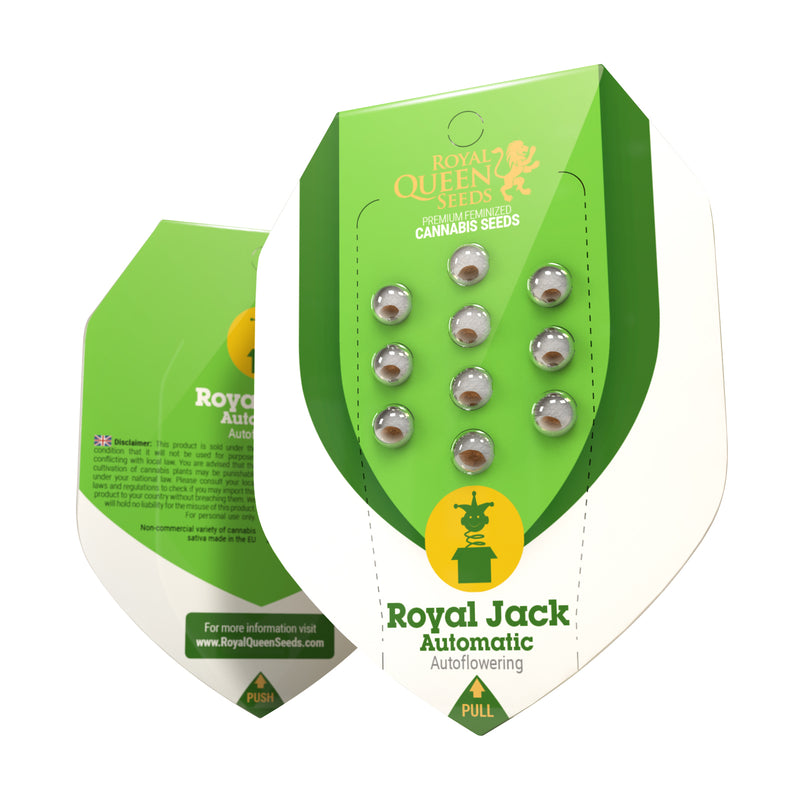 Semillas RQ Royal Jack Auto