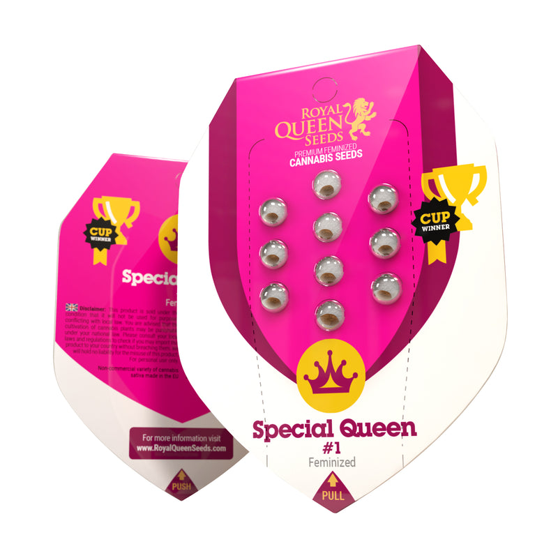 Semillas RQ Special Queen 1