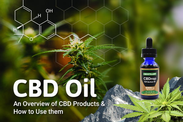 An Overview of CBD Products and How to Use them
