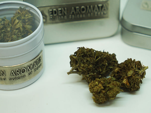 'Boston Punk' Eden Aromata UK Hemp Flower