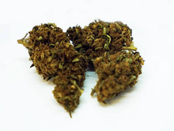 'Jungle Twist' Eden Aromata UK Hemp Flower
