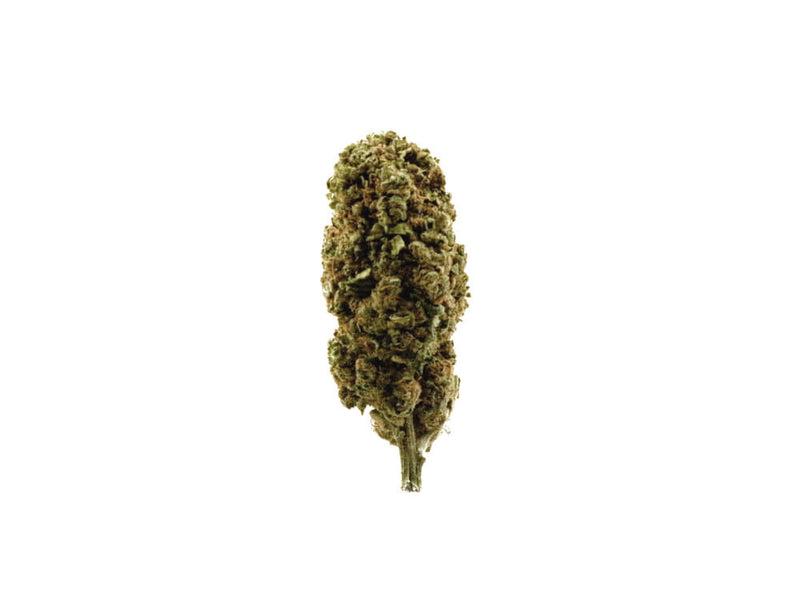 'Gorilla Grips' Eden Aromata UK CBD Hemp Flower +24% CBD only £11.2-1g after discount