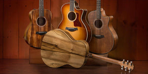 Taylor Guitars put Tasmanian Tonewoods on display