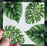 Plantable Greeting Cards | Baby Shower & New Baby