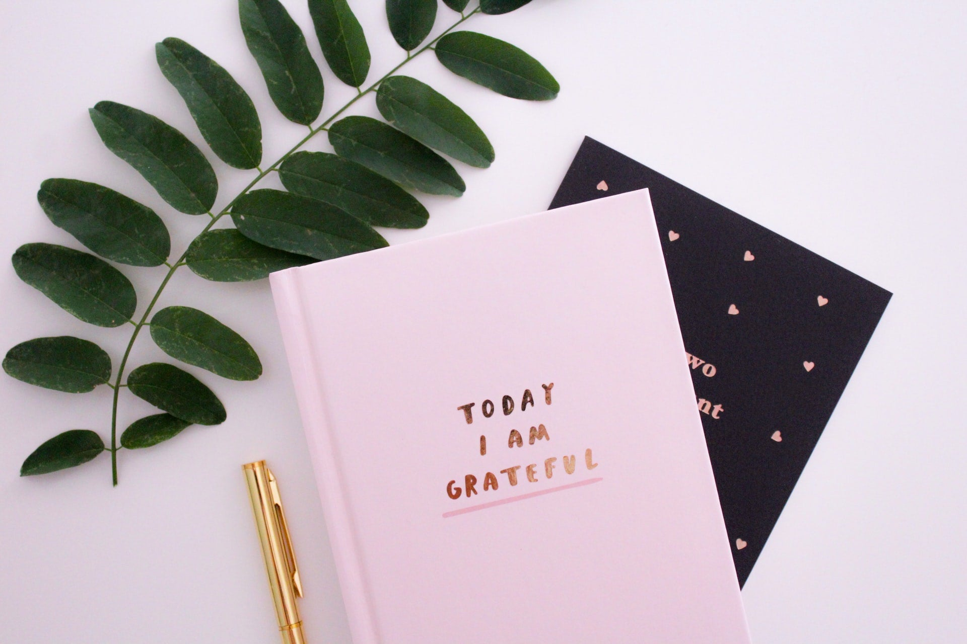 A gratitude journal given as a gift for someone with anxiety sits beside some greenery.