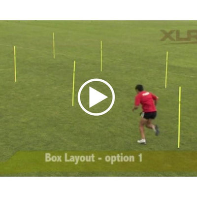 Agility Pole Drills OnlineVideo