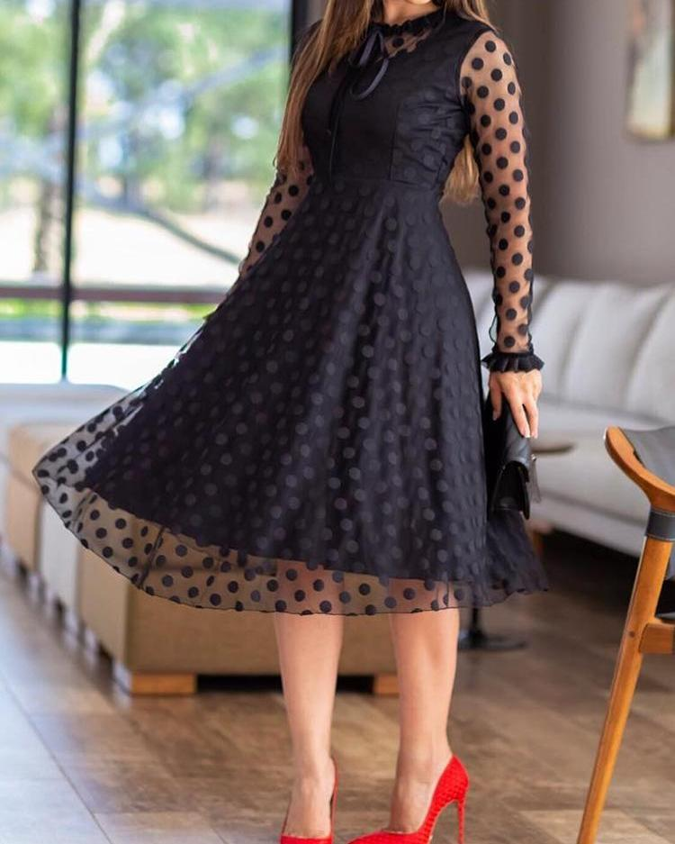 Polka Dot Sheer Mesh Long Sleeve Dress