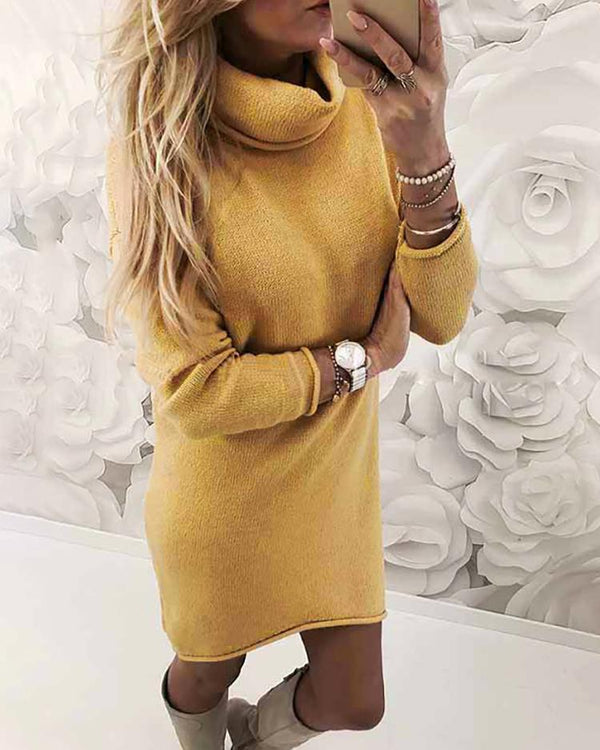 Turtle Neck Slim Fit Plain Sweater Dress