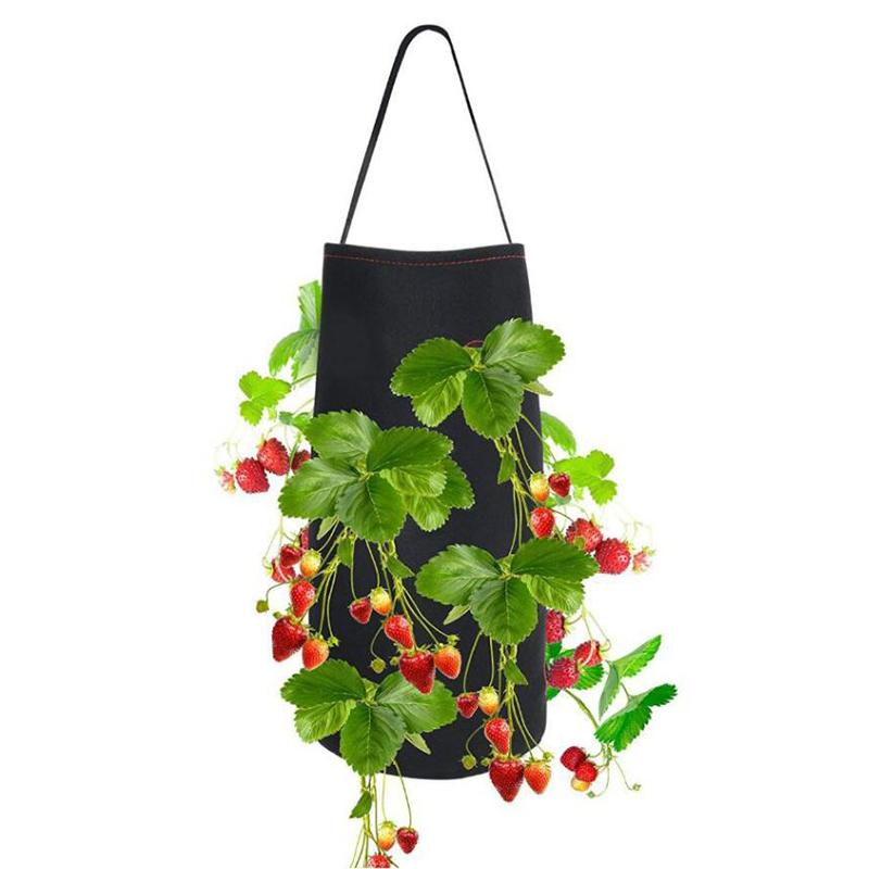 Hanging Strawberry Planting Bag