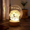 Custom Pet Photo Night Light
