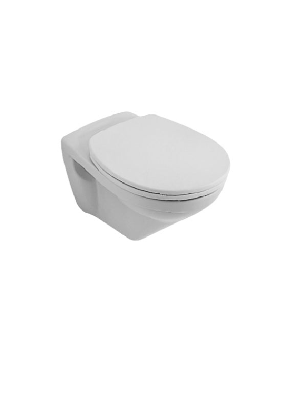 Wall-mounted, washdown WC set