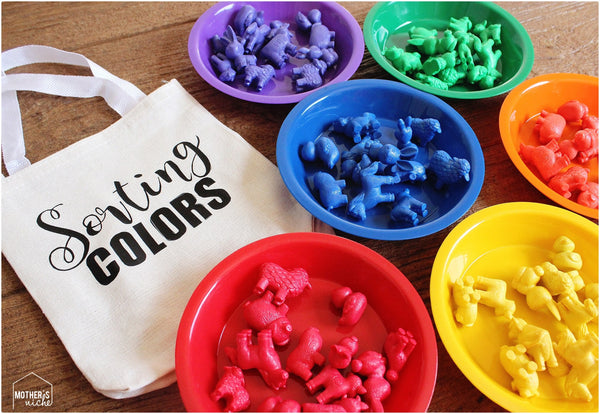 Color Sorting Busy Bag